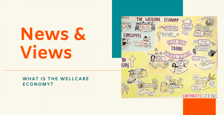 News & Views - What is the Wellcare Economy?